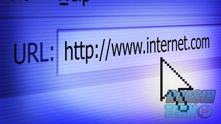 pengertian, fungsi, contoh, dan bagian URL